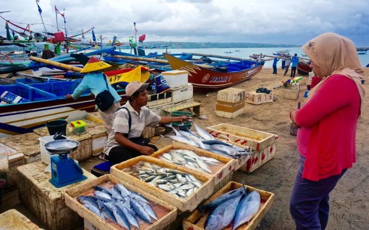рыбный рынок бали
