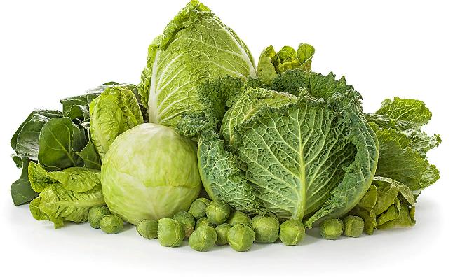Белокочанная капуста польза для здоровья