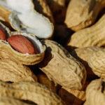 Арахис полезные свойства земляного ореха