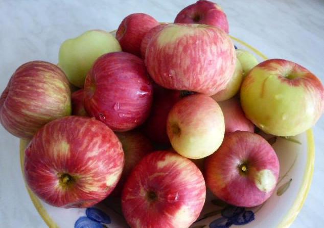 Яблоки польза для организма