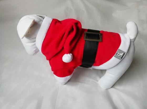 Нарядная одежда для собак
