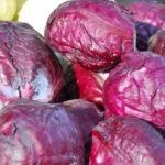 Краснокочанная капуста польза и вред для здоровья