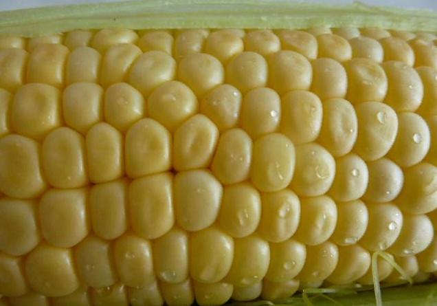 Кукуруза витамины
